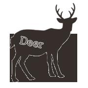 鹿(シカ)のおやつ